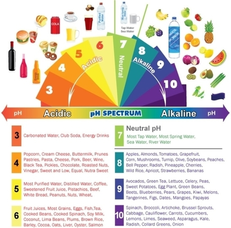 Alkaline Diet Benefits - Why you should alkalize your body - Body in Balance | The Basic Life | Scoop.it
