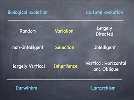 Rationally Speaking: Is cultural evolution a Darwinian process? | Digital Perspective | Scoop.it