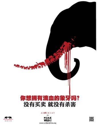 "Elephant News - lovetheplanet | ""How I Became An Elephant"" wins Film Festival award | Scoop.it"
