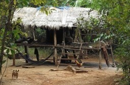 What do you call Ecotourism or Responsible Travel? | Global Insights | Scoop.it