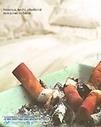 LES DANGERS DU TABAC | Les risques lorsqu'on fume | Scoop.it