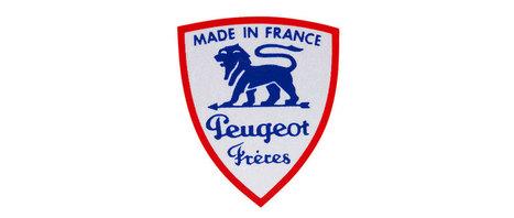 PSA Peugeot Citroën : la division | Etude de Gestion 2014 | Scoop.it