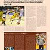 Handball LNH en France