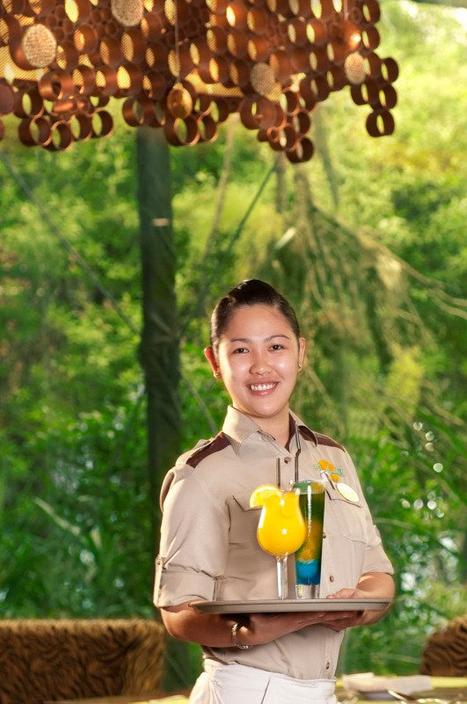 The Jungle Restaurant - Oman Review   Hotels   Resorts   Restaurants   Scoop.it