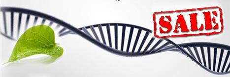 La cour suprême américaine refuse de breveter l'ADN | Des 4 coins du monde | Scoop.it
