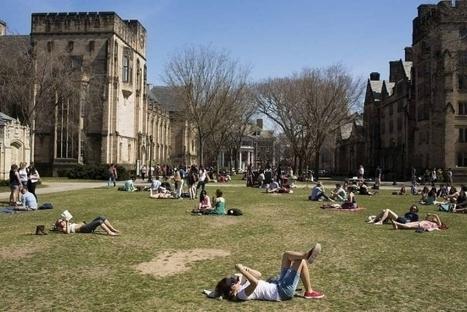 Excelência versus equidade - Ensino Superior EUA | Inovação Educacional | Scoop.it