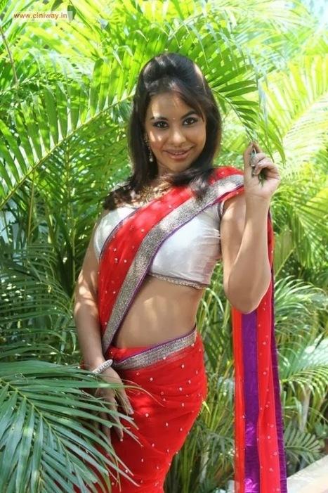 indian film actress: Actress Sri lekha Reddy Stills in Red Saree | tollywood actress | Scoop.it