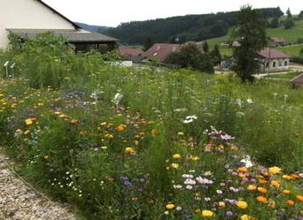 Un labyrinthe fleuri | Labyrinthes pédagogiques | Scoop.it