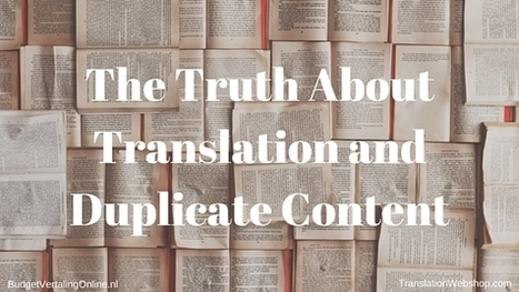 The Truth About Translation and Duplicate Content | BudgetVertalingOnline | My blogs on translations, (content) marketing, entrepreneurship, social media, branding, crowdfunding and circular economy | Scoop.it