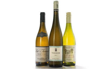 WIne tasting notes: the best white Rhônes  - Telegraph | Maison M.Chapoutier | Scoop.it