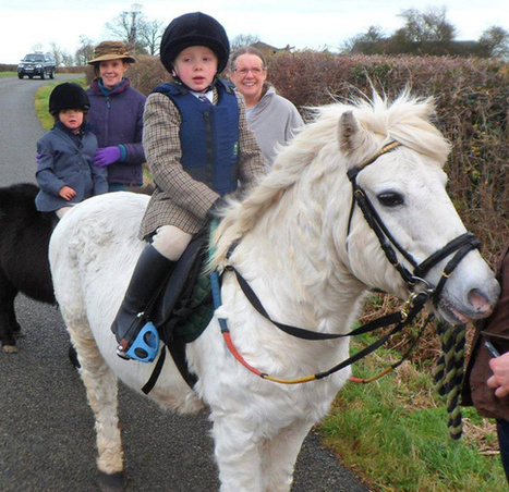 All wee Josh wants for Christmas is his stolen pony back | Horses  around the world | Scoop.it