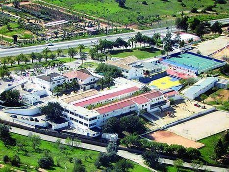 Strategic partnership for two Algarve international schools - The Portugal News | International Education | Scoop.it