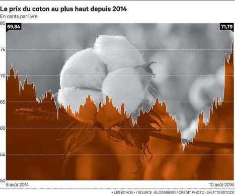 En Chine, les planteurs de coton se mettent… au blé | Questions de développement ... | Scoop.it