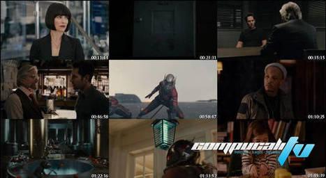 Ant-Man: El Hombre Hormiga (2015) DVDRip Latino | Descargas Juegos y Peliculas | Scoop.it