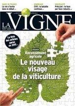 La Vigne, la revue du monde viticole est sur facebook | Viticulture | Scoop.it