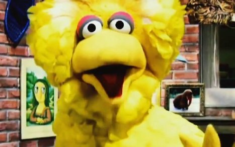 Big Bird Is a 'Criminal Mastermind' in Latest Obama Ad | Prozac Moments | Scoop.it