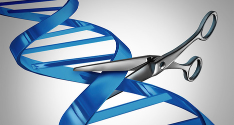 Chinese patient is first to be treated with CRISPR-edited cells   NTIC et santé-bien être   Scoop.it