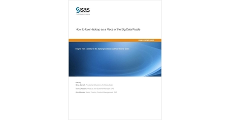How to Use Hadoop as a Piece of the Big Data Puzzle, Free SAS White Paper | Career | Scoop.it