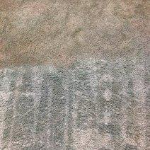 NY Clean Carpet | Organic Clean Carpet | Scoop.it