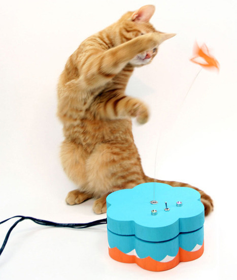 Your cat can now tweet you personal LOLs all day   Arduino Focus   Scoop.it