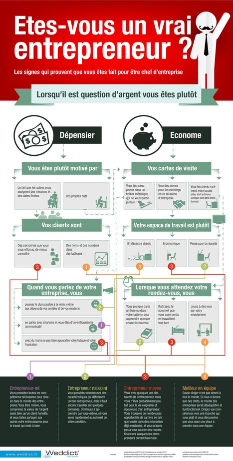Infographie | Etes-vous un vrai entrepreneur ? - Weddict : agence web & référencement | Noiesis Coworking Sophia-Antipolis | Scoop.it