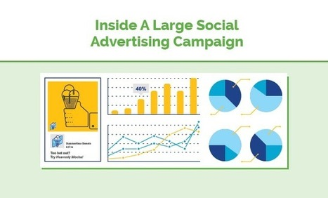 Inside A Large Social Media Ad Campaign | Fundamentals of Marketing | Scoop.it