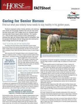 Caring for Senior Horses to a Ripe Old Age. | GHPhorses | Scoop.it
