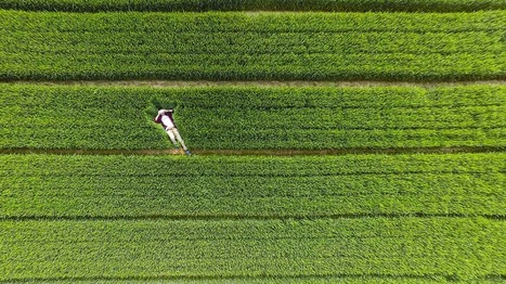 The best drone photography of 2015, from all over the world | Everything Photographic | Scoop.it