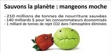 Consommer des fruits et légumes moches : 21 autres pays s'y mettent | Farfeleusement Vôtre | Scoop.it