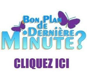 Loueurs de Guadeloupe, devez vous faire des promotions de dernières minutes pour cet été ? | vacances d'été pas chère en 2013 en Guadeloupe | Scoop.it