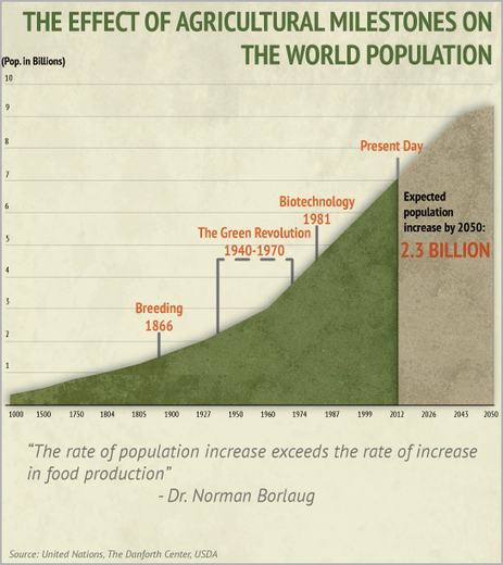 Monsanto | Why Agriculture Needs to Be Improved | Genetically modified seeds | Scoop.it