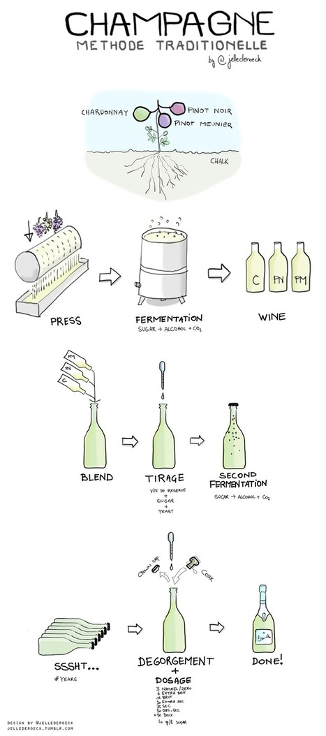 Where Do Champagne Bubbles Come From? | Wine Folly | Champagne.Media | Scoop.it