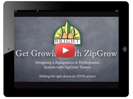 Comment on Algae in Aquaponics by Algae in Aquaponics - by Dr. Nate Storey of Bri... | Aquaponics~Aquaculture~Fish~Food | Scoop.it