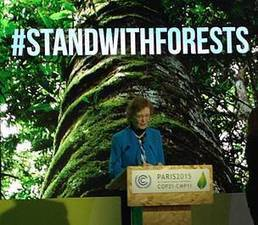 World leaders outline forest vision at climate change talks | GarryRogers Biosphere News | Scoop.it