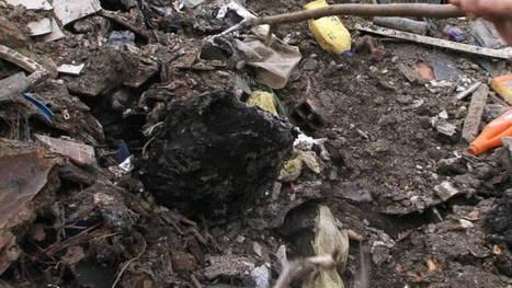'Inwoners rond Napels ziek door illegale stortplaatsen maffia' | La Gazzetta Di Lella - News From Italy - Italiaans Nieuws | Scoop.it