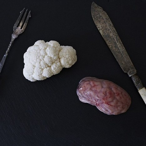 Food for thought: devouring brains with neuroscientists - Wired.co.uk | Neuroscience | Scoop.it