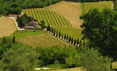 Travel with the Italy Experts—VBT Bicycling and Walking Vacations | Italia Mia | Scoop.it