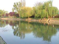 Amenajarile malurilor raului Bega in Timisoara | Nisi's blog | Scoop.it