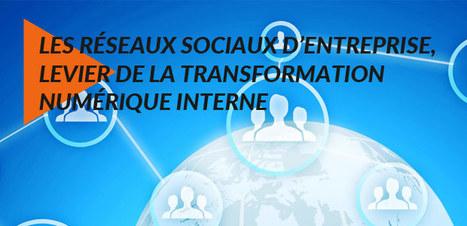 Transformation numérique interne : les réseaux sociaux d'entreprise [Nextformation] | Technologies & web - Trouvez votre formation sur www.nextformation.com | Scoop.it