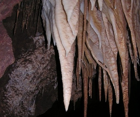 Bizarre Microbes Discovered in Desert Cave | Yahoo! News | CALS in the News | Scoop.it