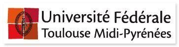 Le patrimoine scientifique toulousain a désormais son ouvrage | Patrimoine et Archives à Toulouse | Scoop.it