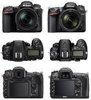 Nikon D500, le roi de l'animalier ? Bientôt le test terrain | La photographie, news, expositions, tuto, matériel, ....  Photo, photography, photographer, photographe | Scoop.it
