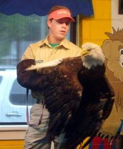 Eagles, owls and snakes amaze at Humboldt library   Tennessee Libraries   Scoop.it