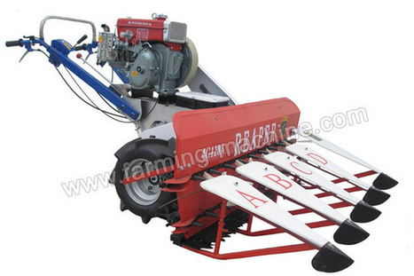 Paddy Wheat Reaper Harvester,Factory Price | Farming Machine | Scoop.it