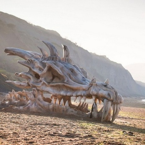 How Did This Giant Dragon Skull Land on a British Beach? | INTRODUCTION TO THE SOCIAL SCIENCES DIGITAL TEXTBOOK(PSYCHOLOGY-ECONOMICS-SOCIOLOGY):MIKE BUSARELLO | Scoop.it