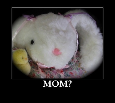 CUTE EASTER CHICKS AND BUNNIES - e-Forwards.com - Funny Emails | Christmas and Easter Fun and Humour | Scoop.it