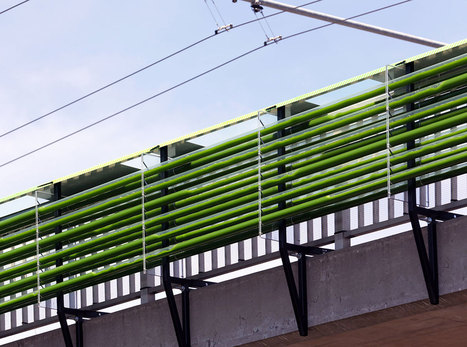 Ces algues installées au-dessus des autoroutes captent le CO2 rejeté par les voitures pour produire de l'énergie | Gestion des services aux usagers | Scoop.it