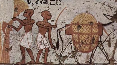 El curioso remedio de los antiguos egipcios para combatir la resaca   Egiptología   Scoop.it