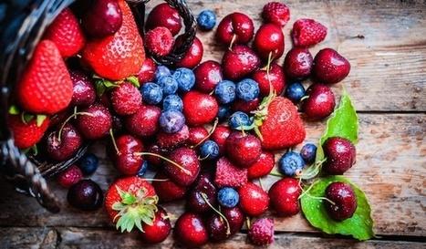 La start-up du jour: MonPotager .com, pour cultiver son potager en ligne et recevoir ses fruits | Revue | Scoop.it