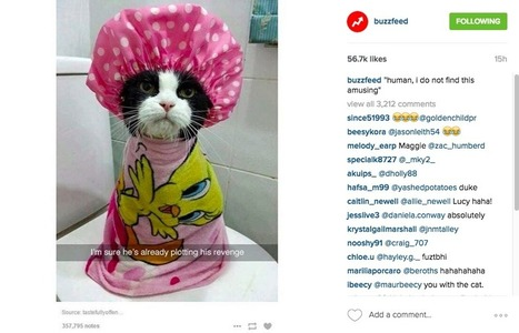 The Buzzfeed Approach to Social Media Strategy | Tourism Storytelling, Social Media and Mobile | Scoop.it